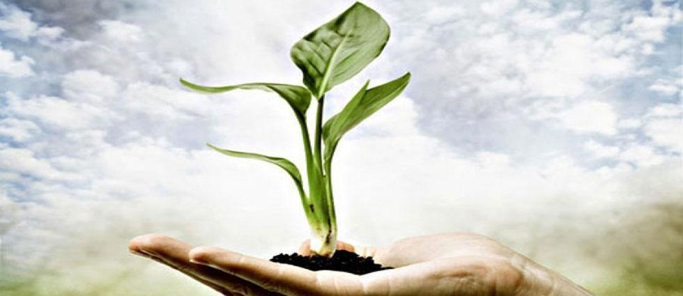 Registar onečišćavanja okoliša (ROO)